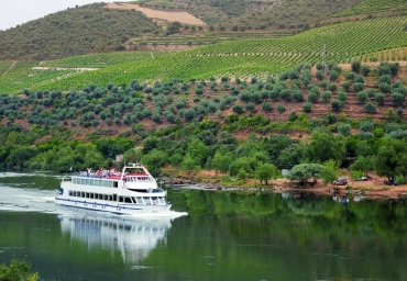 Enjoy a wonderful Douro Cruise with confortable and safe fleet