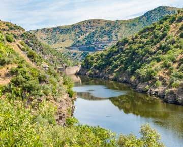 Discover the Douro on a fantastic Cruise in 2020