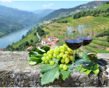 the-more-grapes-the-merrier-how-the-famous-port-wines-are-produced