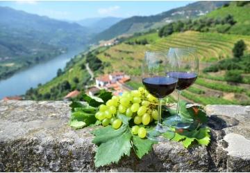aqui-no-hace-falta-la-uva-como-son-producidos-los-famoso-vinos-de-oporto