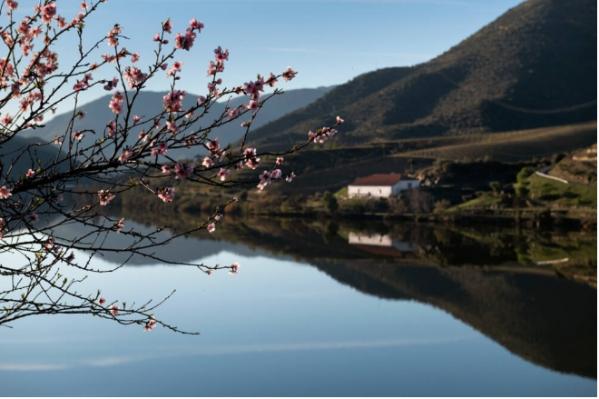 region-del-duero-un-viaje-por-la-prehistoria