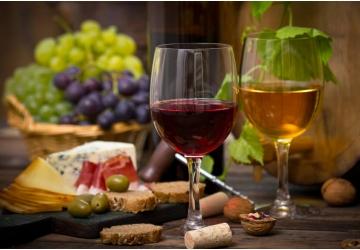 a-apologia-do-vinho-um-cruzeiro-pelas-rotas-do-vinho-verde-e-do-douro
