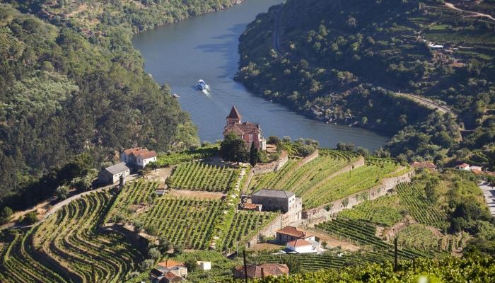 Aproveite a sua viagem ao Douro e embarque num Cruzeiro pelo Rio Douro!