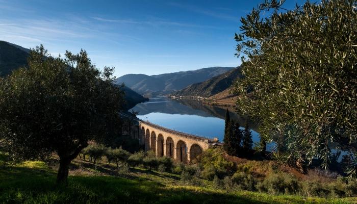 O Douro... a Natureza no seu maior esplendor