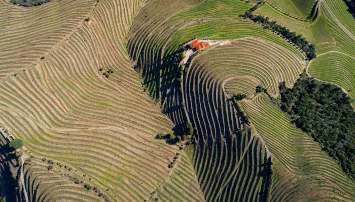 O Pinhão: o melhor destino para um fim de semana no Douro
