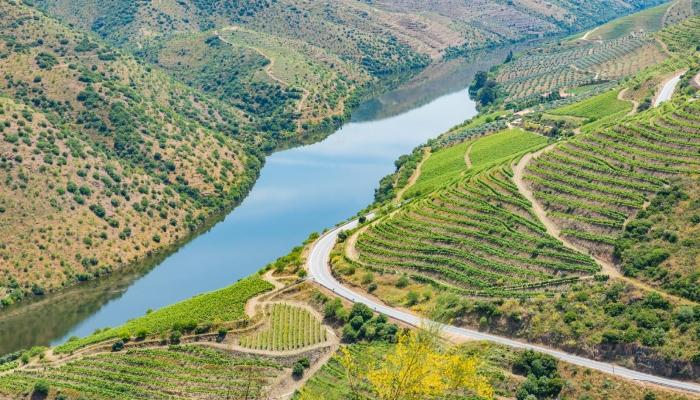 O prestigiado El País Semanal elegeu o Douro como um dos melhores planos de férias para este Verão