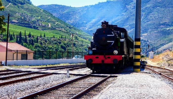 Junte-se a outros turistas no Comboio Histórico do Douro e viva a história em andamento!