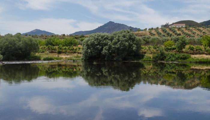O Tua é uma encantadora região inserida no Vale do Douro