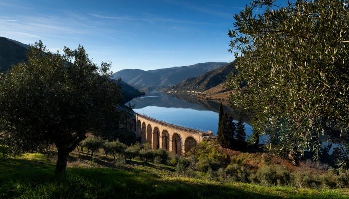 Uma viagem pela paisagem impressionante do Douro
