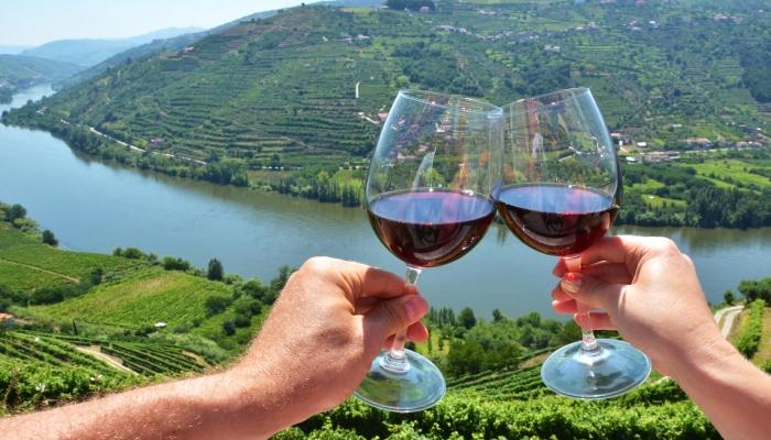 Uma viagem pelos sentidos com a descoberta dos vinhos do Douro