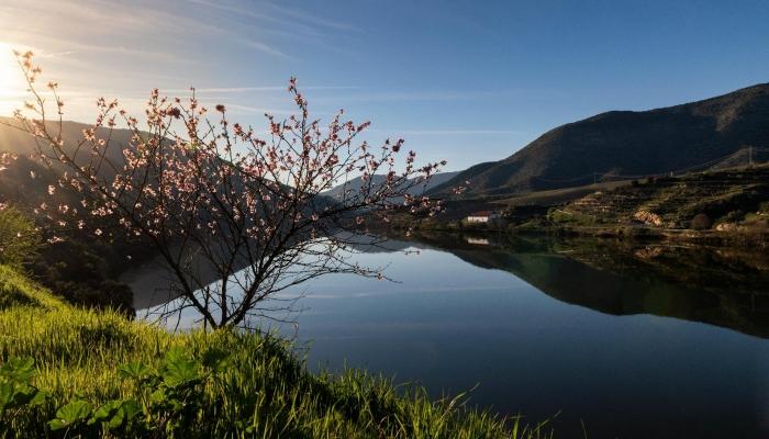 La belleza del paisaje te invita a unas vacaciones románticas.