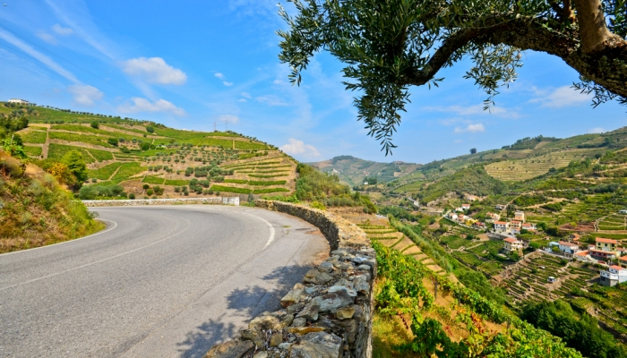 "It is in the Douro region that lies what was considered the ""best road in the world"""