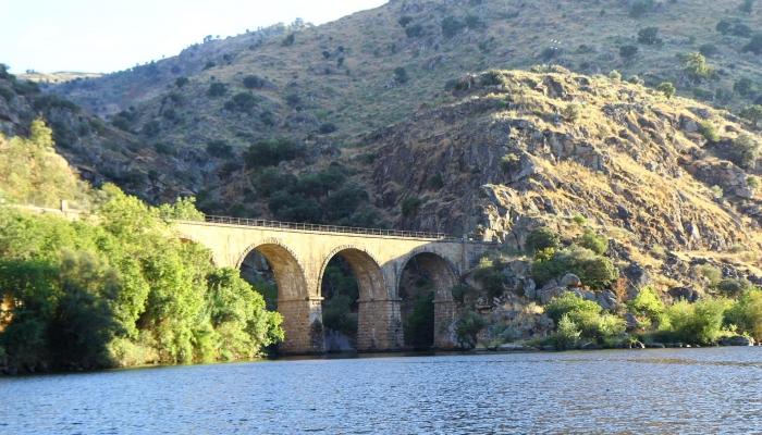 Conseguimos juntar o melhor que o Douro tem para oferecer: cruzeiro + viagem em comboio histórico