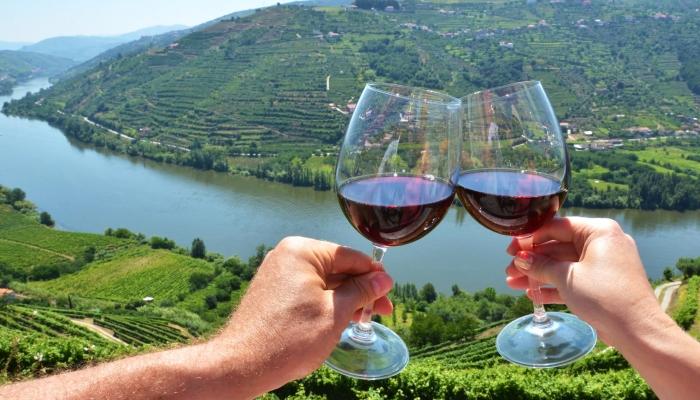 Os vinhos tintos são deliciosos, apurados, refinados... Um deliciosos néctar para todas as ocasiões.