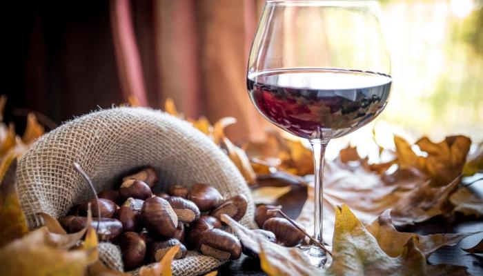 O São Martinho celebra as castanhas e o padroeiro do vinho, sendo uma celebração de alta importância no Douro