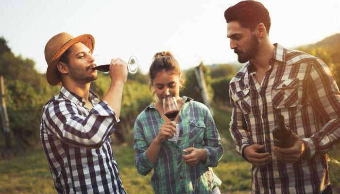 Desfrute de uma experiência de Enoturismo , e deslumbre os seus amigos com os seus conhecimentos sobre vinho.