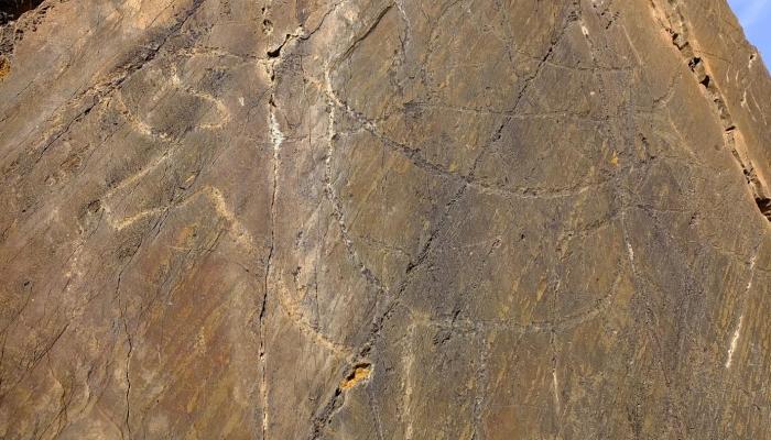 As gravuras do Vale do Côa permitem reviver a história dos nossos antepassados