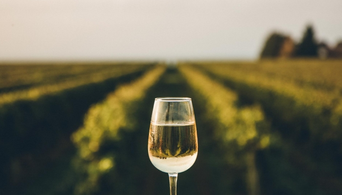 Forte e elegante, o Vinho Verde é o ideal para acompanhar um belo dia de Verão