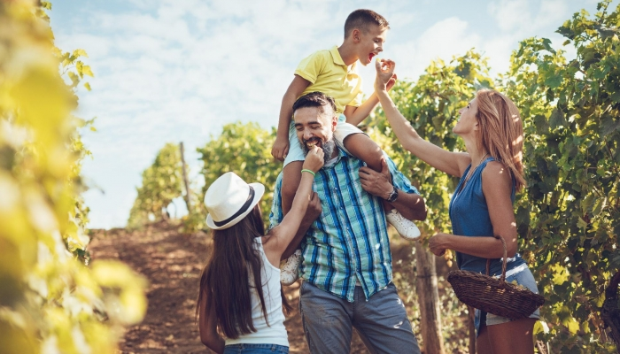 Transforme as suas férias numa aprendizagem divertida sobre o Vinho do Douro