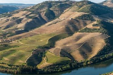 Croisière Pinhão - Romaneira - Pinhão