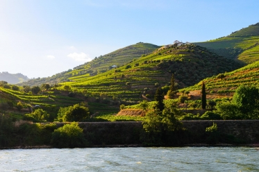 Douro City Break Cruise
