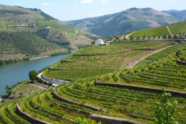 Douro Enchanté