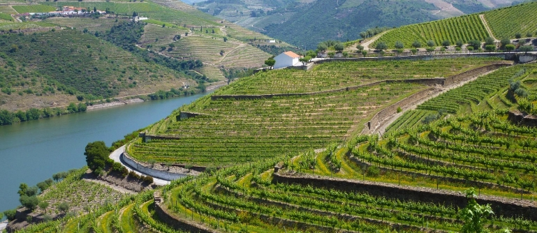 3-Day Cruise – Charming Douro
