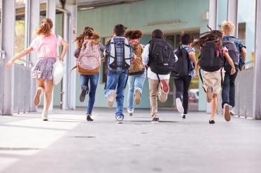Programas Especiais para Escolas no Douro