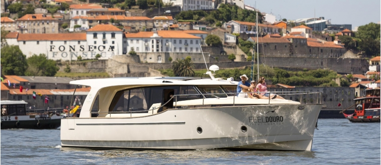 Cruise on a yacht Panoramic Porto